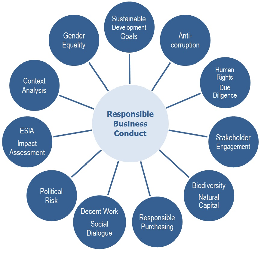 Responsible Business Conduct Services